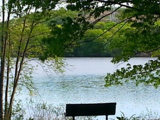 Horn Pond